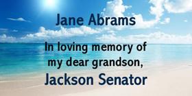 1_Jane-Abrams