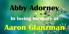 Abby-adorney-2020