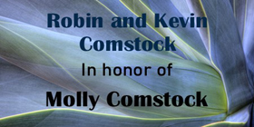 Comstock-2020