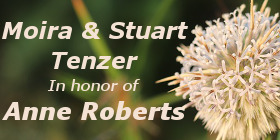 Moira and Stuart Tenzer