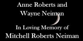 Roberts-neiman-2020-yes