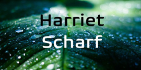 Scharf-Harriet-2020