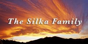 Silka-2