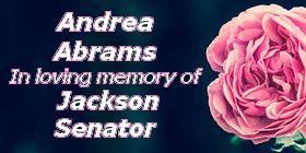 Andrea Abrams