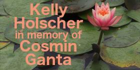Kelly Holscher