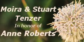 Moira and Stuart Tenzer