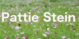 PattieStein--