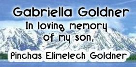 goldner2