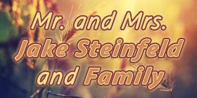 steinfeld2015